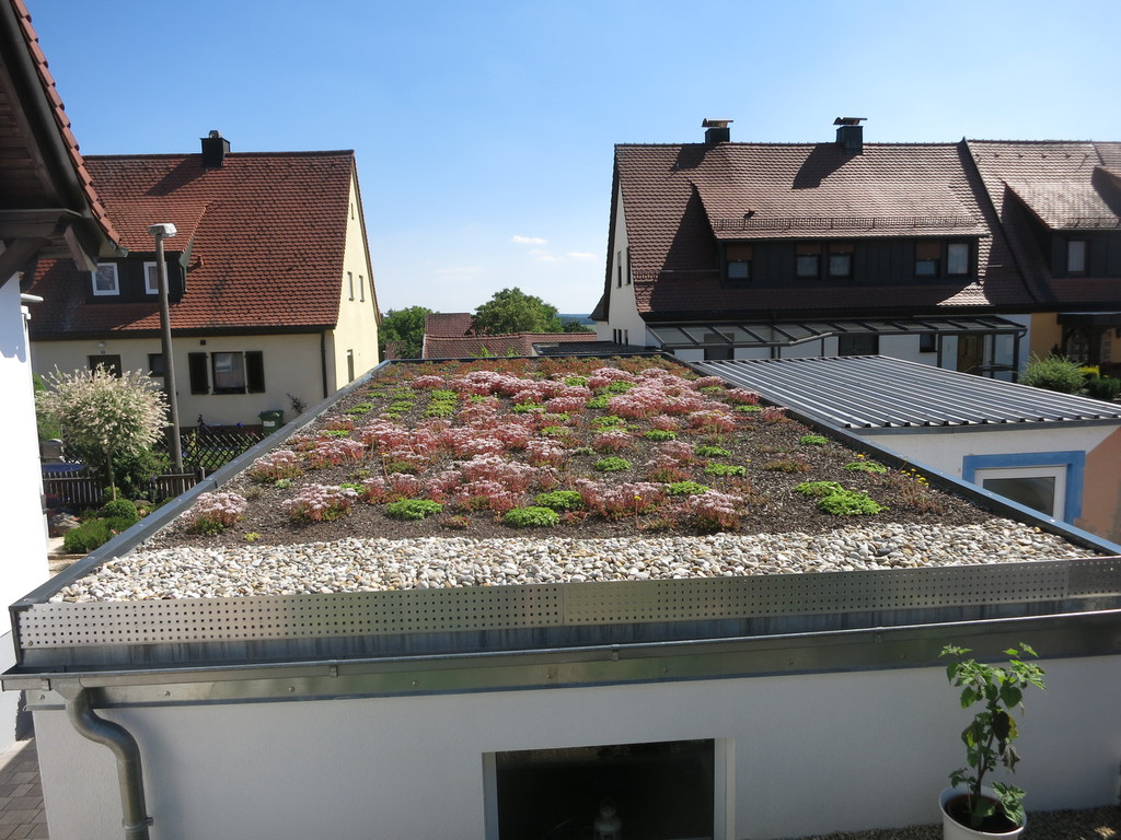 Der gartenzwerg gartengestaltung - Rollrasen balkon ...